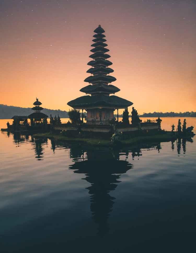 brown pagoda near body of water